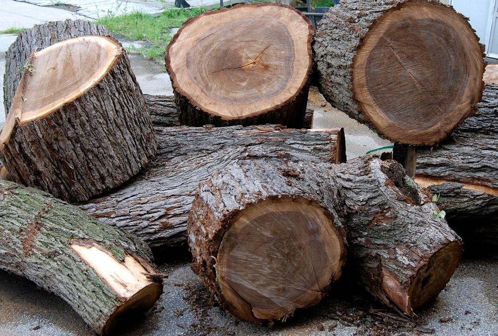 gỗ óc chó tự nhiên